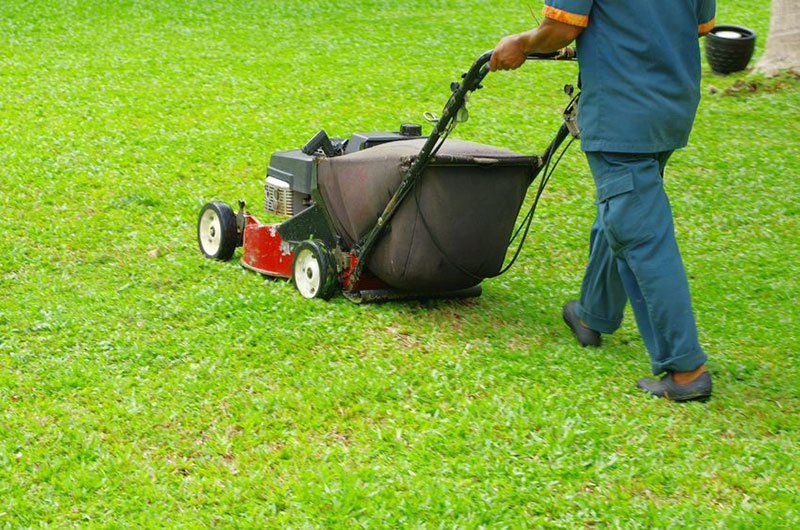 seo for garden services